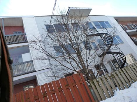fence,stairs, triplex