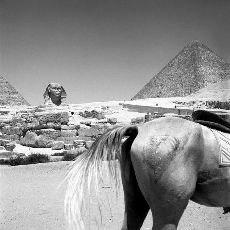 1959, Egypt
