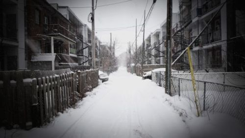 Photograph of a lane in Winter by Neath Turcot
