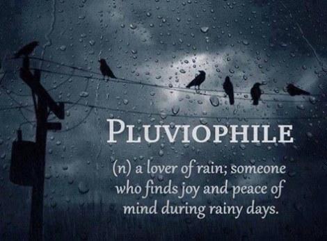 pluvio